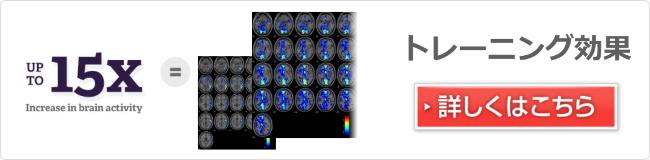 脳の活動領域